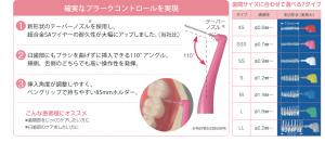 DENT.EX デントイーエックス 歯間ブラシ
