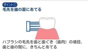 正しい歯の磨き方1