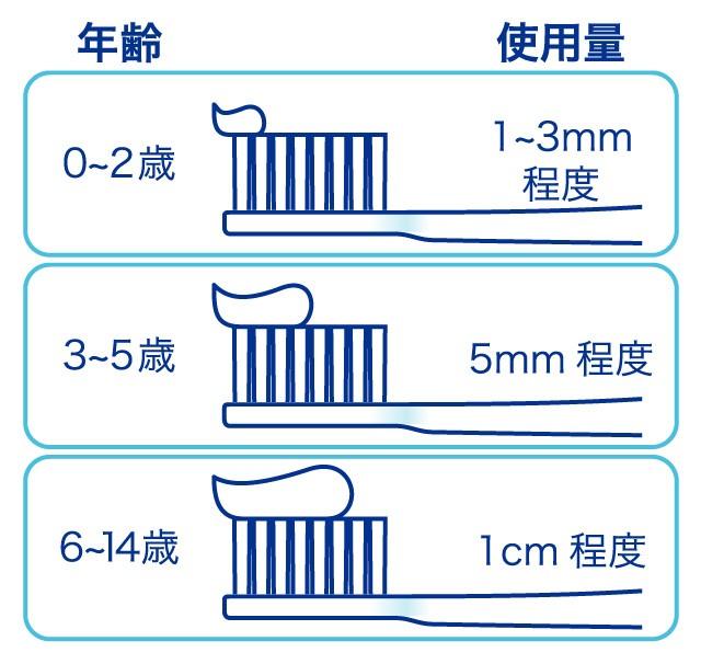 フッ素配合歯磨き粉の使用量のイラスト