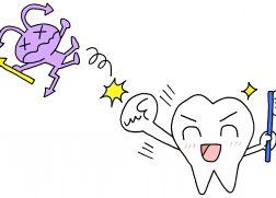 虫歯 再石灰化
