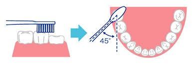 歯磨き方法5