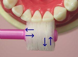 360度歯ブラシ