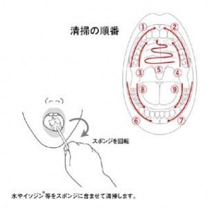 スポンジの使用方法
